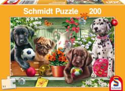 Schmidt Puzzle 56198 Verspielte Hundekinder, 200 Teile, ab 8 Jahre
